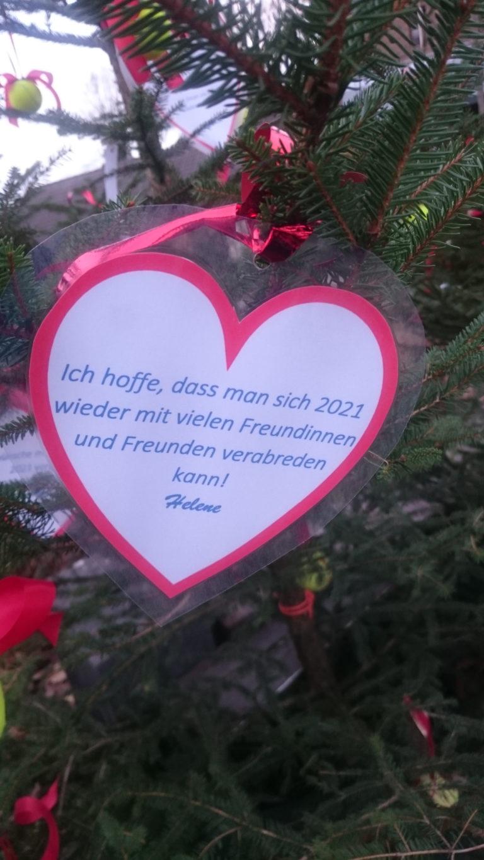 Weihnachtswald_2020_03
